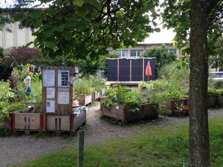 20140822_Merkurgarten-2